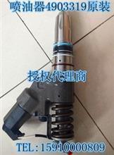 济南正品喷油器4903319/3076132原装QSM/PT系列/3076132 4903319