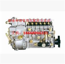 潍柴高压油泵/612600081217