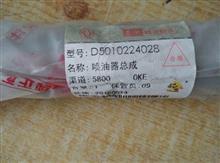 雷诺喷油器总成 D5010224028/D5010224028