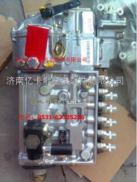 潍柴发动机高压油泵 612601080175,612601080386图片