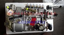 重汽豪沃高压油泵总成/HOWO燃油喷射器VG1096080130/VG1096080130