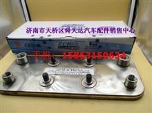 雷火电竞下载气体机配件热交换器 612600190246