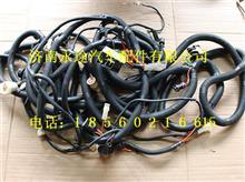 柳汽霸龙507车架电线束总成 TH401ZG-3724280C/TH401ZG-3724280C