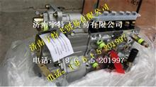 重汽发动机喷油泵带全程K型调速器/VG1560080023