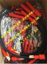 潍柴WP10LNG CNG高压点火线圈612600190948/612600190948