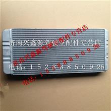 中国重汽豪沃A7暖风散热器总成/WG1664820053