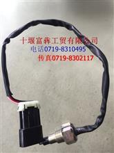 东风猛士水位传感器总成/3839C21-010
