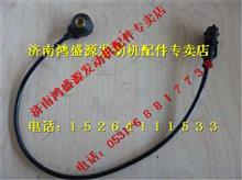 重汽天然气爆震传感器/VG1238090005