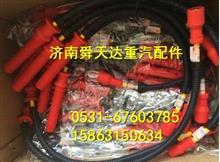 潍柴WP10LNG CNG高压点火线  厂家批发/612600190948