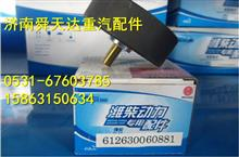 潍柴WP12皮带惰轮 涨紧轮 厂家批发/612630060881