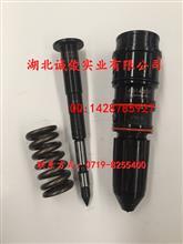 CCEC重庆康明斯NT855--C280S10喷油器总成4914308/4914308-20