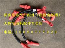 上柴天然气发动机高压导线T89-013-06+A/T89-013-06+A