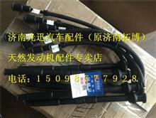 公交燃气高压导线G1A00-3705070A/G1A00-3705070A