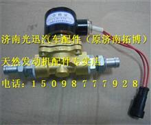 玉柴天然气冷却液电磁阀 PS-L026-06/PS-L026-06