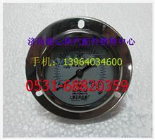 陕汽德龙M3000高压压力表    陕汽驾驶总成/SZ956000843