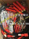 潍柴WP10LNG CNG高压点火线/612600190948