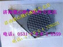 欧曼GTL车门扬声器面罩FH4610160011A0/FH4610160012A0
