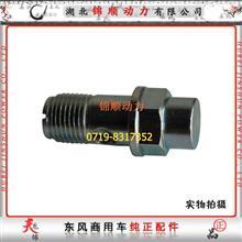 东风雷诺发动机高压油泵空心螺栓 F019D03378/F019D03378