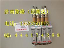 中国重汽天然气火花塞VG1560080701/VG1560080701