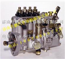 朝柴4102原装无锡威孚油泵总成 4PWS503/4PWS503
