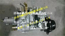 朝柴4102原装无锡威孚油泵总成/BHF4AW105007