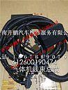 潍柴WP10CNG天然气动力发动机配件ECU线束/612600190474