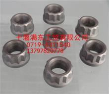 【D5000694646】原厂供应东风雷诺连杆螺母/D5000694646