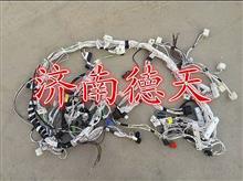 陕汽德龙 驾驶室线束总成(机械发动机CAN仪表)/DZ95189771640