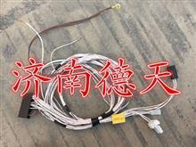 陕汽德龙 电动玻璃升降线束/DZ93189776013