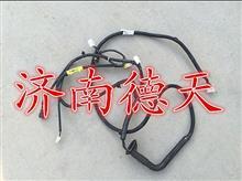 陕汽德龙右门线束/DZ96189772778