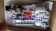 重汽豪沃高压油泵总成/HOWO燃油喷射器VG1096080190/VG1096080190