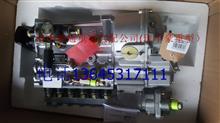 重汽豪沃375马力高压油泵总成/柴油泵VG1096080160/VG1096080160