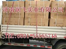 供应陕汽德龙X3000驾驶室车门内饰板配件 原厂配件德龙事故车/15688831339