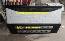 重汽豪沃A7平顶驾驶室散热器面罩/WG1664110011