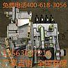 潍坊道依茨226B WP6.240柴油机增压器喷油泵/20160323