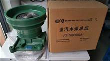 水泵总成重汽HOWO重汽,陕汽,北奔,欧曼,川汽,斯太尔