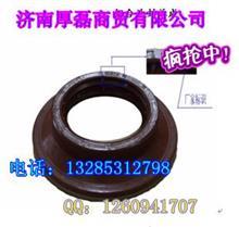 WG9970320036组合油封