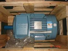 TECORA氧气分析仪/TECORA氧气分析仪