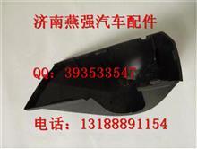 陕汽德龙X3000倒车镜支架保护壳/陕汽德龙X3000倒车镜支架保护壳