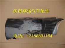 重汽豪沃A7低地板左导风罩/WG1664111051    WG1664111052