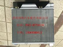 重汽豪沃轻卡配件冷凝器总成/LG1613822001