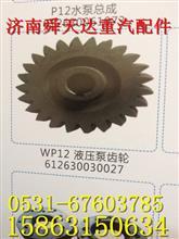 转向泵齿轮 原厂重汽潍柴WP12发动机配件厂家大修改装拆车件/612630030027