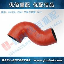 中国重汽 原厂 T12 天然气发动机胶管 VG1238110002