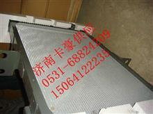 豪沃HOWO天然气发动机水箱/散热器总成/WG9725530150