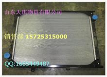 陕汽德龙奥龙散热器总成DZ95259532212价格650/DZ95259532212