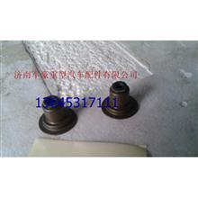 重汽天然气配件气门油封 VG1246050167/VG1246050167