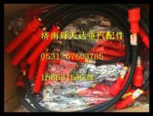 WP10LNG CNG高压点火线 重汽潍柴天然气发动机原厂配件厂家改装/612600190948