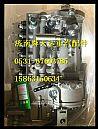 潍柴发动机喷油泵 重汽潍柴天然气发动机原厂配件厂家改装价格/612601080376