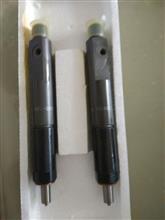 厂家直销 铂金斯喷油器喷油嘴T63301004 柴油发动机配件/T63301004