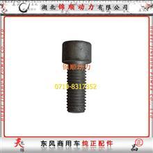 东风雷诺发动机减震器螺栓 D5003009455/D5003009455